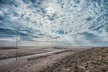 Der Nationalpark Wattenmeer